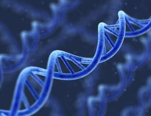 genetische Erkrankungen - DNA