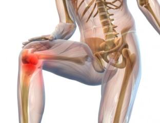 Orthopädische Erkrankungen - Knieschmerzen